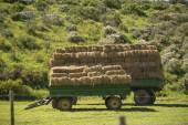 Trailer with hay bales — Stock Photo