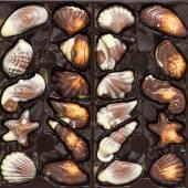 Belgian chocolate pralines in box — Stock Photo