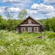 Old wooden house in Russian village — Stock Photo #80635266