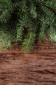 The christmas tree on wooden background — Stock Photo