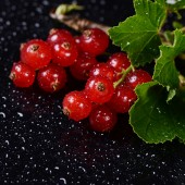 The red currant close up — Stock Photo
