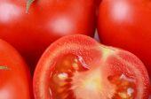 El corte de tomate rojo fresco — Foto de Stock