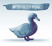 Watercolor duck — Cтоковый вектор