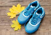 Sneakers and yellow leaves — Foto de Stock
