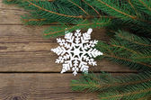 Branch of a fir-tree and snowflake — Stock Photo