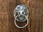 Old door handle in form of lion muzzle — Stock Photo