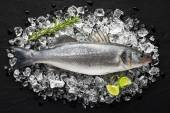 Fresh fish on ice on a black stone table top view — Stock Photo