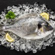 Fresh dorado fish on ice on a black stone table top view — Stock Photo #63433011