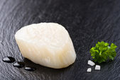 Scallop on black stone plate — 图库照片