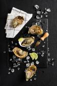 Fresh oysters on a black stone plate top view — Stock Photo