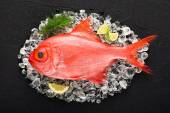 Red palometa fish on ice on a black stone table top view — Stock Photo