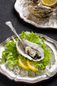 Fresh oyster on plate ready to eat — Stock Photo