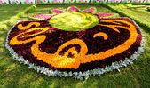 Flowers Gallery in Baghdad — Стоковое фото