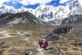 Porters with heavy load after crossing Cho La Pass in Himalayas. — Стоковое фото