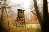 Hunting pulpit in forest at sunrise, Poland. — Stock Photo
