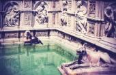 Retro style picture of Fonte Gaia, Siena, Italy. — Stock Photo
