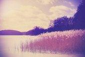Vintage retro toned image of lake in winter.  — Stock Photo