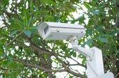 CCTV camera on a nature background — Stock Photo