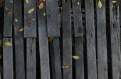 Autumn background with little leaves on old woods — 图库照片