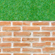 Orange brick wall background with green grass — Stock Photo #55842769