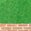 Orange brick wall background with green grass — Stock Photo #55843277