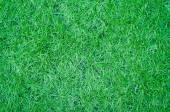 Artificial green grass texture for background — Stock Photo