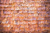 Vintage lined dry leaves wall color background texture — Stock Photo