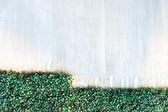 Gray wall and Plastics grass texture background — ストック写真