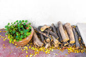 Asiatic Pennywort pot and log wood — Stock Photo