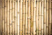 Grunge yellow bamboo background and texture — Stock Photo