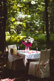 Romantic table — Stock Photo