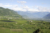 Adige Valley in the South Tyrol — Foto de Stock