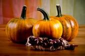 Ripe pumpkins for Halloween. — Stock Photo