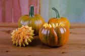 Manually perform a Halloween pumpkin. — ストック写真