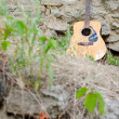 Acoustic guitar leaning against the wall — Stock Photo #53026763