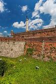 Bělehradské pevnosti a kalemegdan park — Stock fotografie