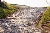 Detail of cobblestone path — Stock Photo