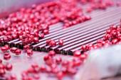 Sour cherries in processing machines — Stockfoto