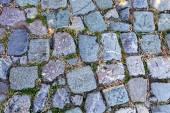 Detail of cobblestone path — Stockfoto