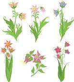Cute floral bouquets. Vintage floral set. — Stock Vector
