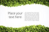 Eco text frame — Stock Photo