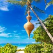 Dream scene. Beautiful palm tree over white sand beach. Summer n — Stock Photo #63791507