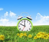 Alarm clock on the green grass field — Стоковое фото