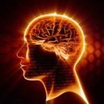 Man head with shining brain — Stock Photo #60066085