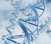 DNA. Abstract background  — Stock Photo