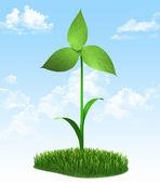 Ветряная мельница сделана из зеленых листьев — Стоковое фото