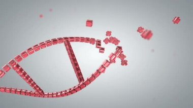 Animated process of constructing DNA — Stock Video