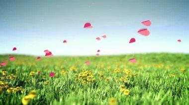 Romantic hearts — Stock Video