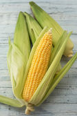 Four corn cobs with husks — Stock Photo