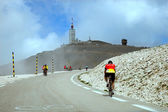 Cyclists on the way to the top of Ventoux mount — Stock fotografie